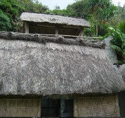 Batan thatched roof