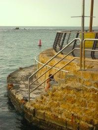 Seawall steps