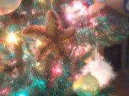 Christmas 2013 015