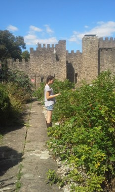 castle-gardens-2