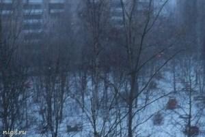 Зима снова в Питере!