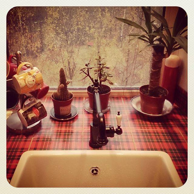 Окно на кухне с осенью