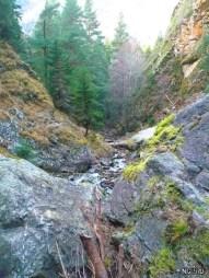 Вид на речку Шумку спиной к водопаду