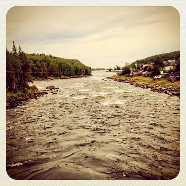 Река Умба. Кольский полуостров#умба #кольскийполуостров #реки