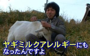 もはや、「ヤギが好きなのか、イヤなのか、どっち?!」状態に!