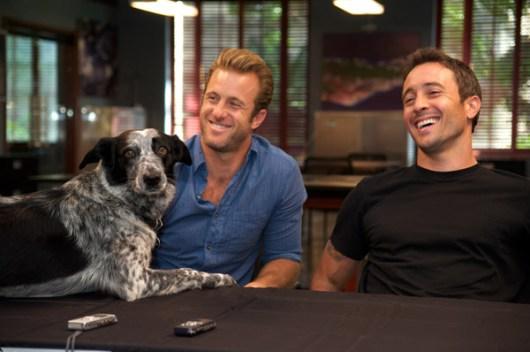 スコット・カーンの愛犬: ドット 典拠: hawaii5o
