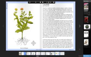 -Publicación de 'Caléndulas', en Revista Argonautas-