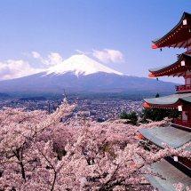 Besteigung des Mount Fuji: Gymnastik und Nudelsuppe für alle