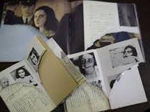 """Zerstörung von Anne Franks """"Tagebuch""""-Exemplaren: Japanische Polizei fasst Verdächtigen"""