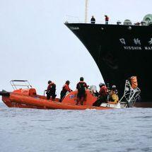 Japan will in der Antarktis wieder Wale jagen