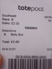 Flutter on the Gee Gees (5)
