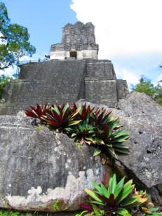 Tikal (3)