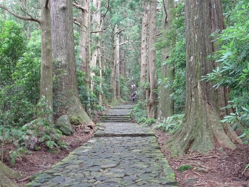 chemin-pèlerinage-bouddhiste