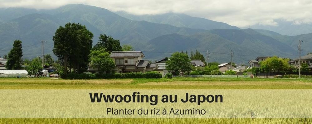 wwoofing-au-japon-planter-du-riz-au-japon
