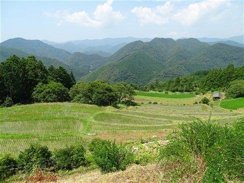 Le paysage depuis le Ryokan