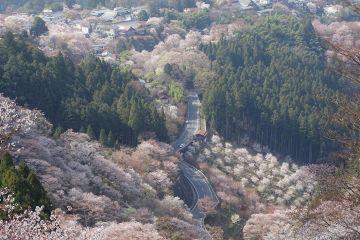 Le Mont Yoshino au Japon