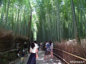 Arashiyama (26)