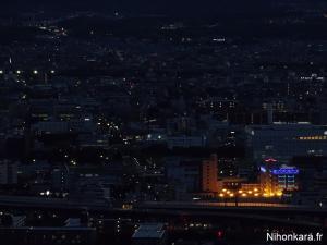 Fushimi Inari Jinja (1)