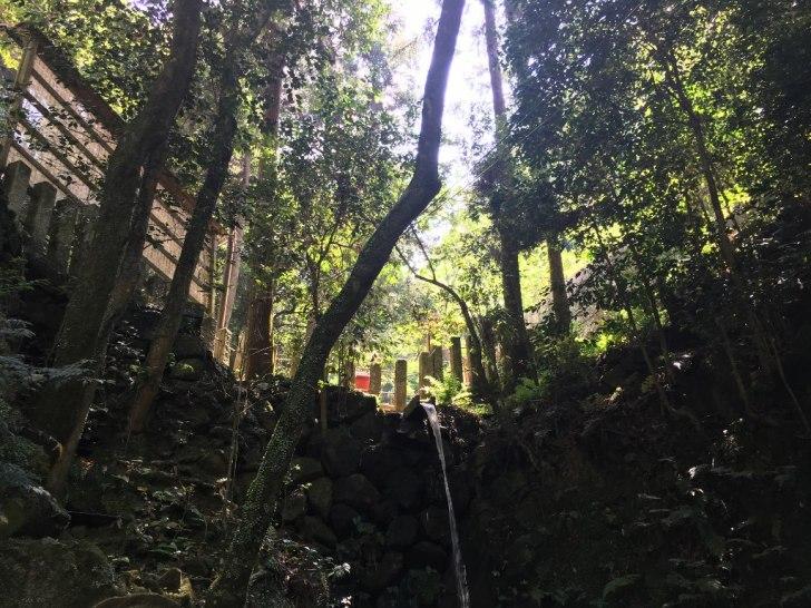 天照大神高座神社と岩戸神社 (138)