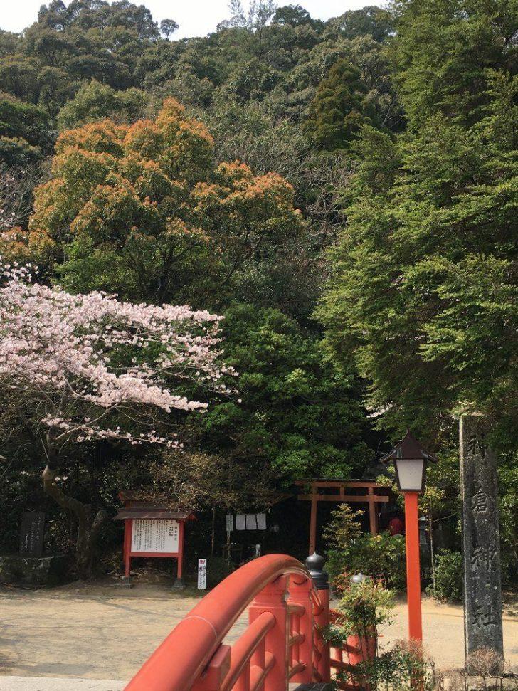 天磐盾 神倉神社 (10) (1024x768)