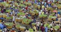 Wholesale mango market