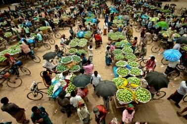 Mango market of Kansat