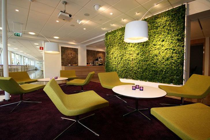 9 Ide Kreatif Pembatas Ruangan dan Partisi Kantor
