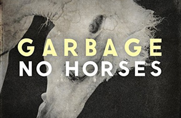 garbage-no-horses
