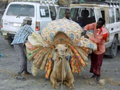 Carrying our beds for the night