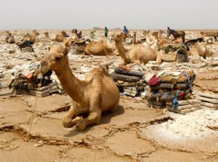 Our turn soon