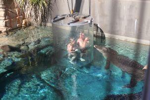 The cage of death - hello Mr crocodile