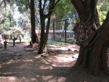 Netsa Art Village. Addis Ababa, Ethiopia. Photo by Nikki A. Greene.