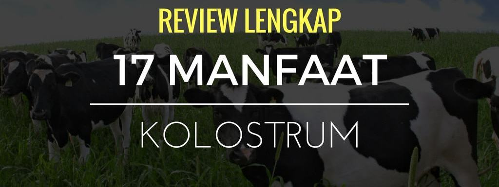 Review Lengkap : 17 Manfaat Kolostrum / Colostrum