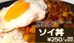 blogソイ丼