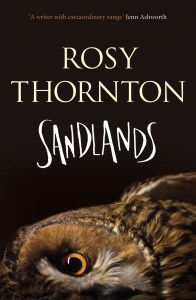 Sandlands cover high res