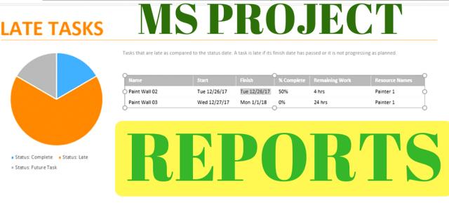 Microsoft Project Dashboard – Report