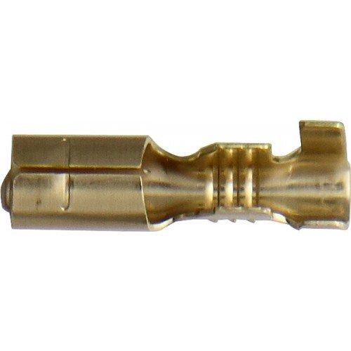 Female Bullet Terminal