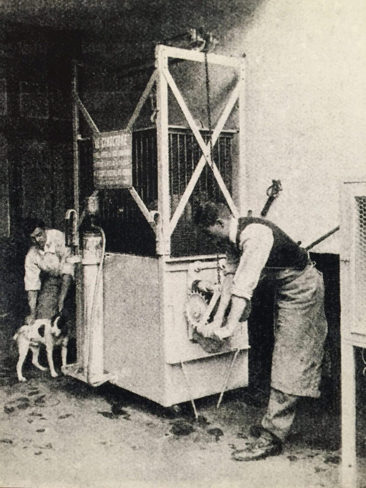Köpekleri elektrik akımıyla yok eden makine.