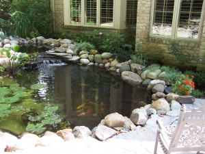 water features 021