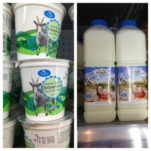 Getyoghurt & Getmjölk från DalSpira Mejeri