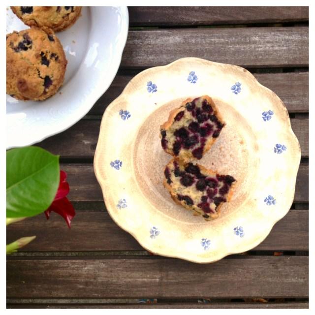 Blåbärs & kokosmuffins (mjöl, mjölk, socker & nötfria)