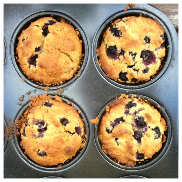 Blåbärs & kokosmuffins (mjöl, mjölk, socker & nötfria)4