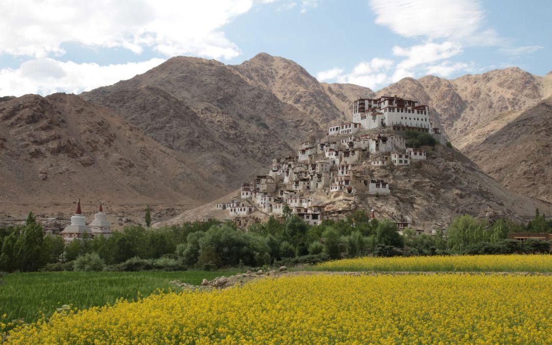 Paysages Ladakhis