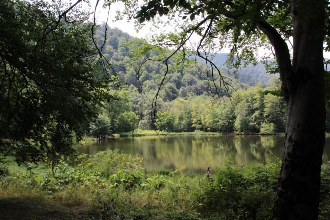Gosh lake, dans la région de Dilijan