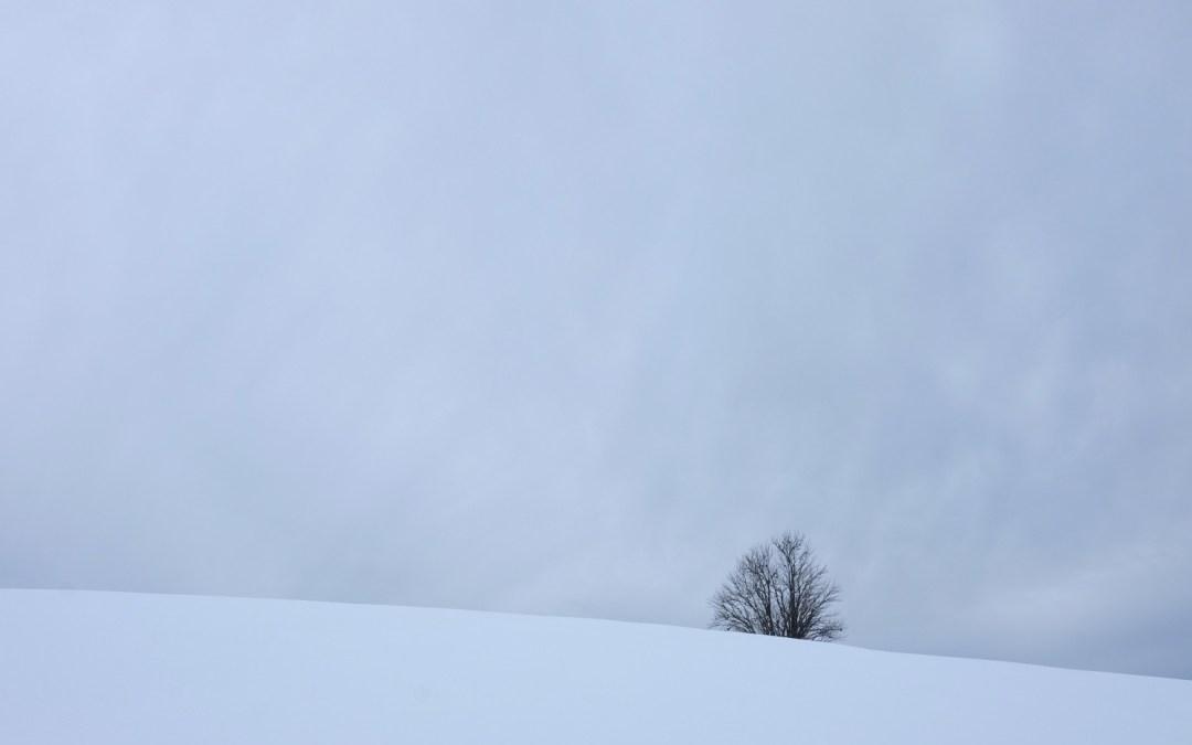 Janvier 2019 – Un weekend dans le Jura