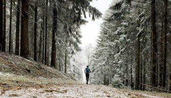 Nils läuft im winterlichen Wald