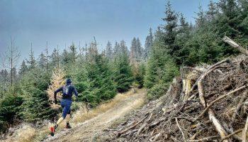 Trailrunning mit dre Inov8 Race Elite Vest