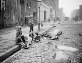 סוס מת ברחובות ניו יורק 1900 - הנרי ברג (1813 – 1888) היה אחד החלוצים המרכזיים במאבק לזכויות בעלי חיים באמריקה וזכה לכינוי 'המלאך במגבעת'. הוא פעל נמרצות נגד התעללות בסוסים ונגד קרבות כלבים – פעולות אשר ייחסו לו שנאה כלפי בני אדם (משום שפגע בפרנסת העגלונים ומפעילי הקרבות). ברג היה נתון תחת מתקפה תקשורתית וחברתית ואף תחת איומים על חייו, אך המשיך בפועלו. בנוסף, הקים את הארגון הראשון בעולם נגד התעללות בילדים.