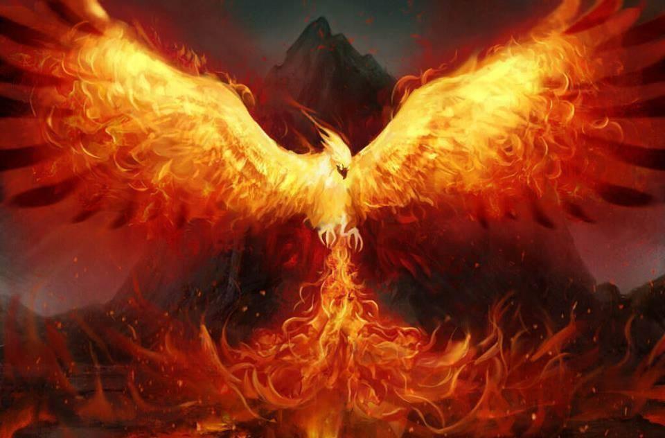 Astrologia Semanal: Lua Fênix e o Poder de criação – 07 a 13/11