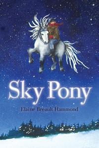 Sky Pony